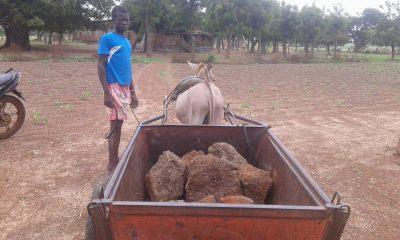 Burkina Entraide construction école