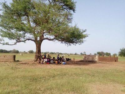 Ecole sous un arbre 2