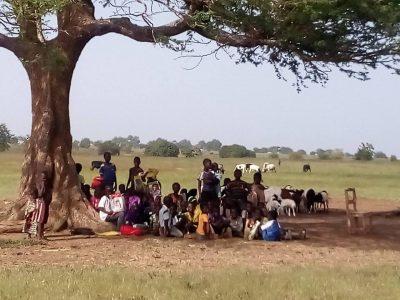 Ecole sous un arbre