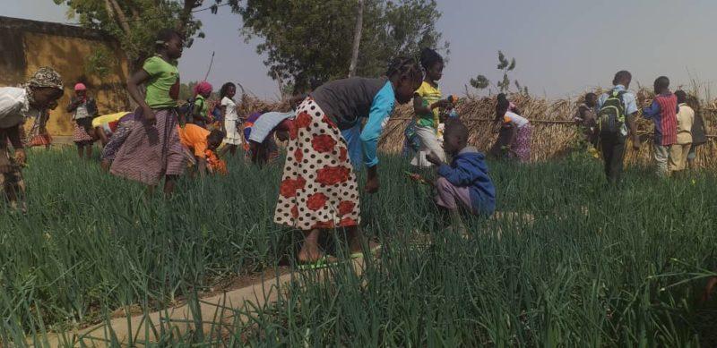 beau jardi Burkina