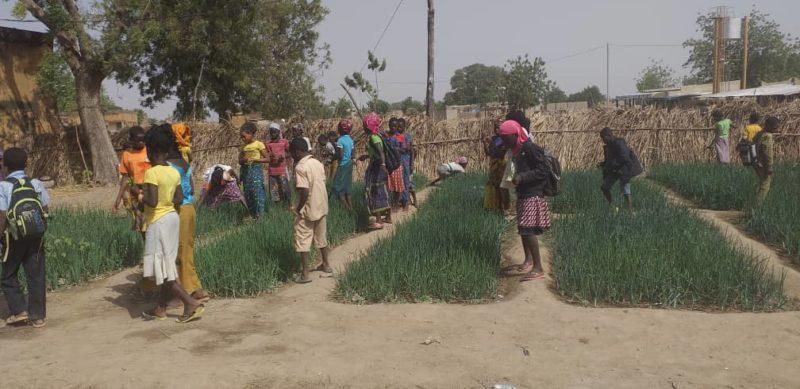 Jardin à Béka
